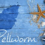 Veranstaltungen auf Pellworm